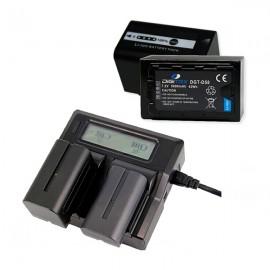 PACK 2 DIGITEX (Compatible con Panasonic VW-VBD58E)