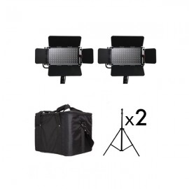 PACK 2 PROLUX PLX-A600