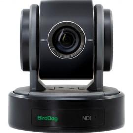BirdDog Eyes P100 1080P Full NDI PTZ Camera con SDI (Negro)