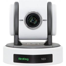 BirdDog Eyes P100 1080P Full NDI PTZ Camera con SDI (Blanco)