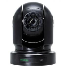 BirdDog Eyes P200 1080P Full NDI PTZ Camera con Sony Sensor y HDMI / 3G-SDI (Negro)