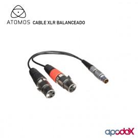ATOMOS CABLE XLR BALANCEADO