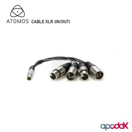 ATOMOS CABLE XLR (IN/OUT)